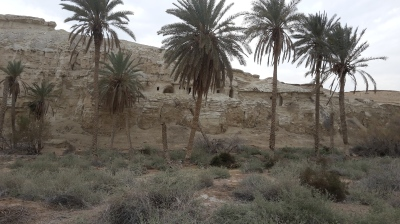The ''lauras'' in the Judean desert January 2015